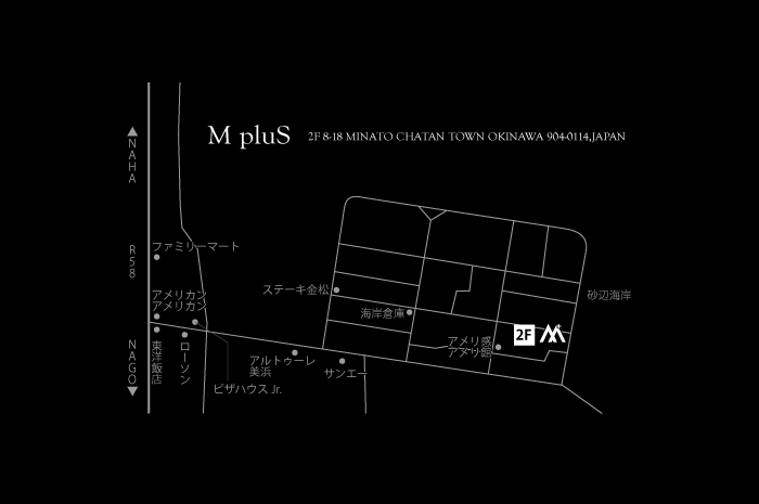 Mplus_MAP